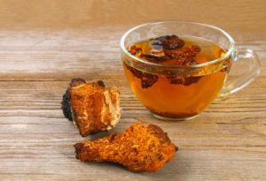 Chaga Tee kaufen